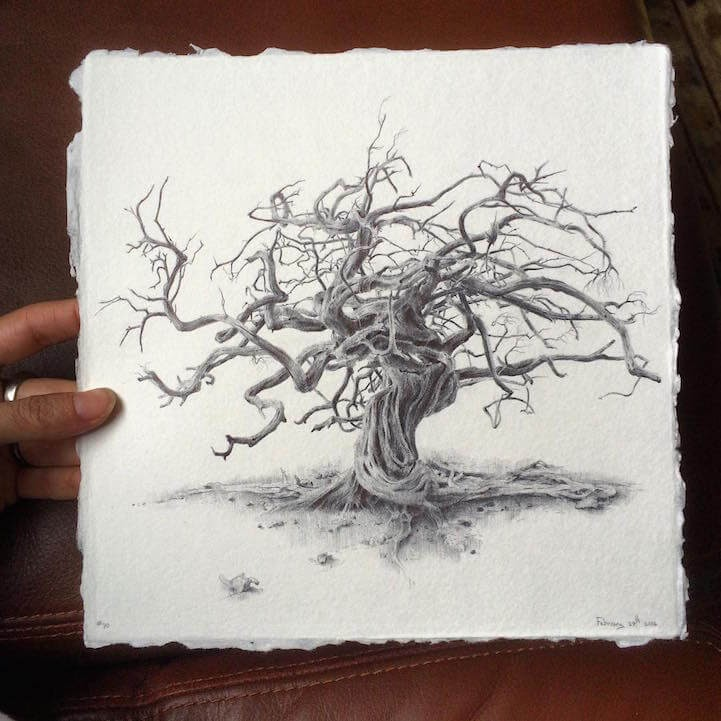 08-Dina-Brodsky-Tree-Drawings-www-designstack-co