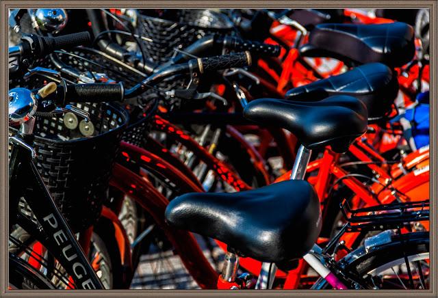 Conjunto de bicicletas,asientos predominantes