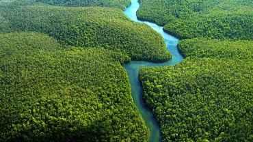 http://epoca.globo.com/colunas-e-blogs/blog-do-planeta/amazonia/noticia/2015/06/para-biodiversidade-floresta-e-boa-inteira-e-nao-em-pedacos.html