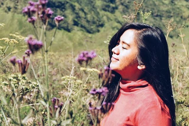 bunga lavender di gunung bromo