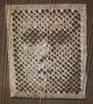 """La """"faccia"""" apparsa accanto al primo cerchio nel grano a Chibolton"""