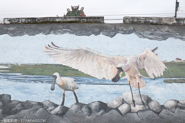 高美濕地濱海自行車道、濕地步道彩繪