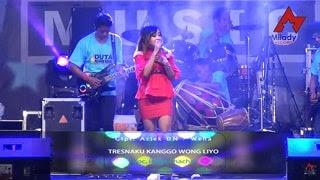 Lirik Lagu Tresnaku Kanggo Wong Liyo - Intan Chacha
