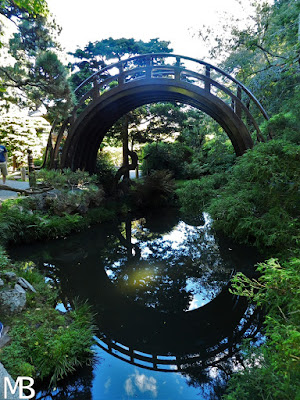 Japanese Tea Garden san francisco california