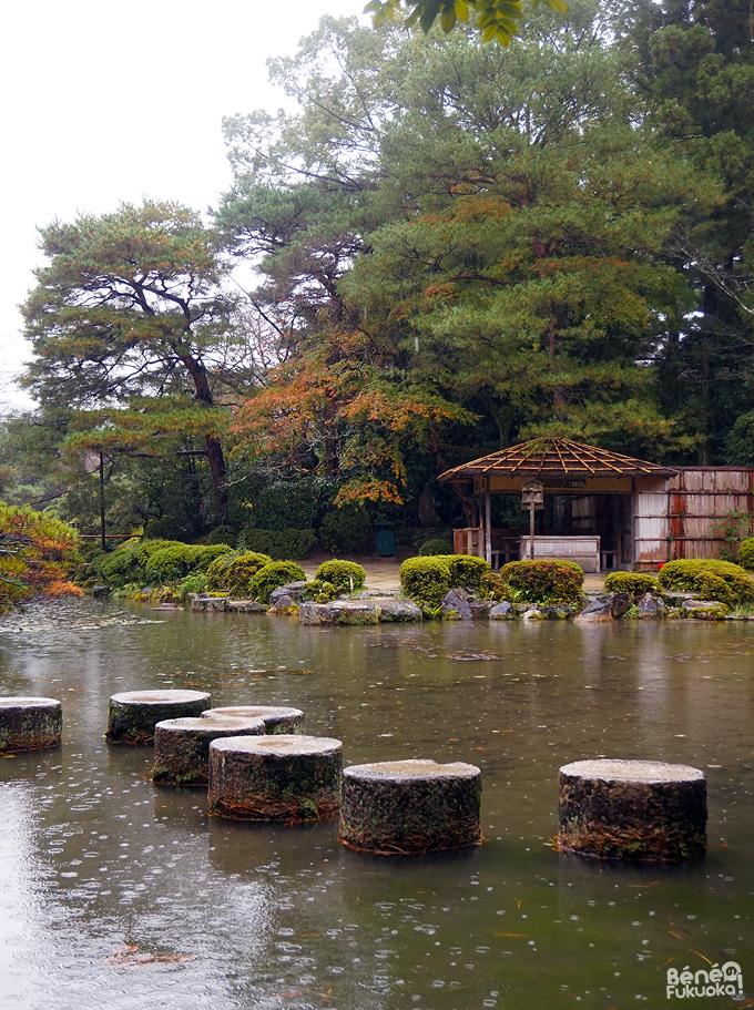 Momiji au Jardin du sanctuaire Heian, Kyôto