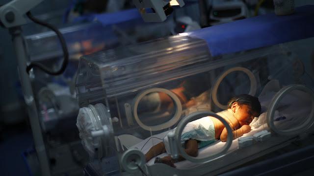 ¿Pesticidas o casualidad?: Nacimiento de niños sin brazos es un misterio sin resolver en Francia