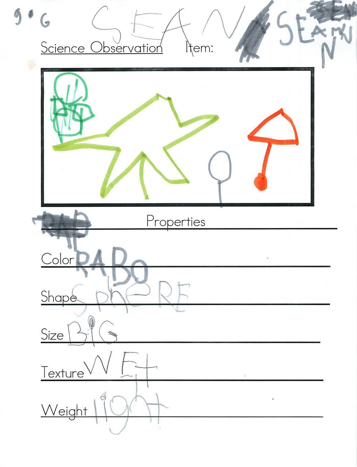 Joyful Learning In Kc Science Observation Sheet