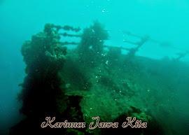 diving indonoor wreck karimun jawa