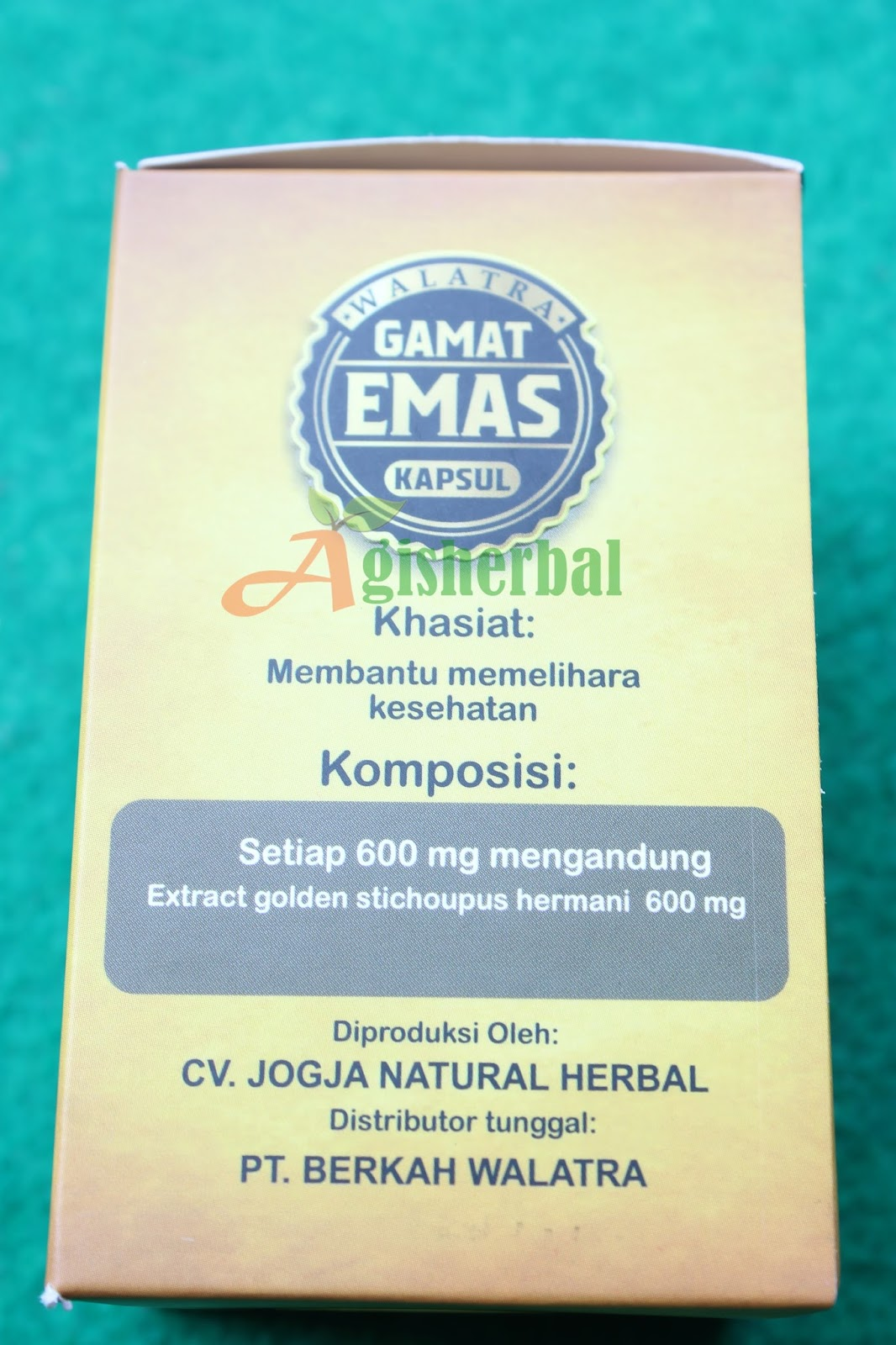 Komposisi Gamat Emas Kapsul Herbal Multikhasiat