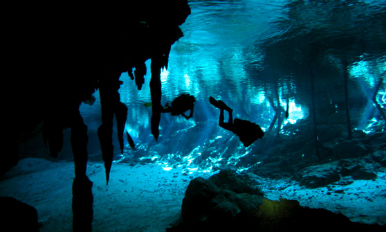 3d Wallpapers For Nokia E63 Cool Images Cave Diving