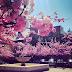 Today's Spring Break