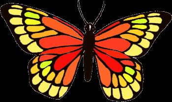 Thevicbridgeworld El Estampado De Este Verano Mariposas Por Doquier