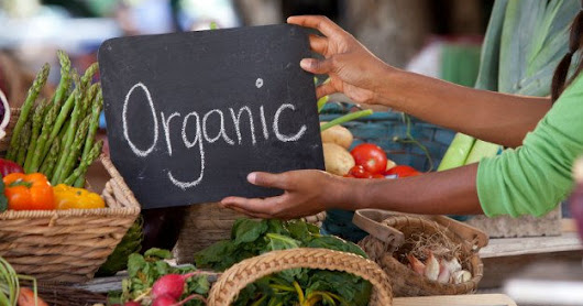 an essay on the importance of organic foods Essays related to organic foods: benefits and drawbacks this is because, other than destroying all living organisms exposed, the radiation is said to alter the molecular structure of food, producing small amounts of potentially harmful organic compounds such as formaldehyde.
