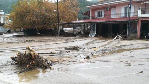 Τεράστια καταστροφή στην Δυτική Ελλάδα: Πνίγηκαν μελίσσια και χάθηκαν περιουσίες Photos