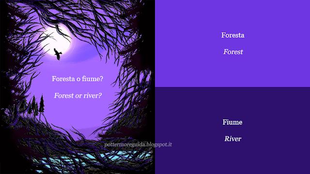 Foresta o fiume?