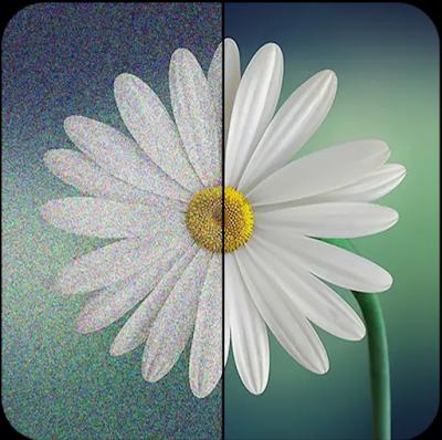 طريقة إزالة التشويش من الصور باستخدام هذا التطبيق الذي ينصح به محترفي التصوير