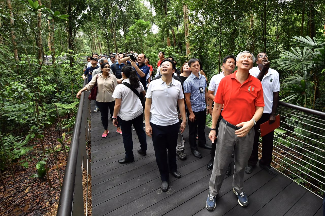 PM Lee and Mr Lawrence Wong, Minister for National Development and Second Minister for Finance, at the boardwalk at the SPH Walk of Giants in the Learning Forest of Singapore Botanic Gardens on March 31, 2017.