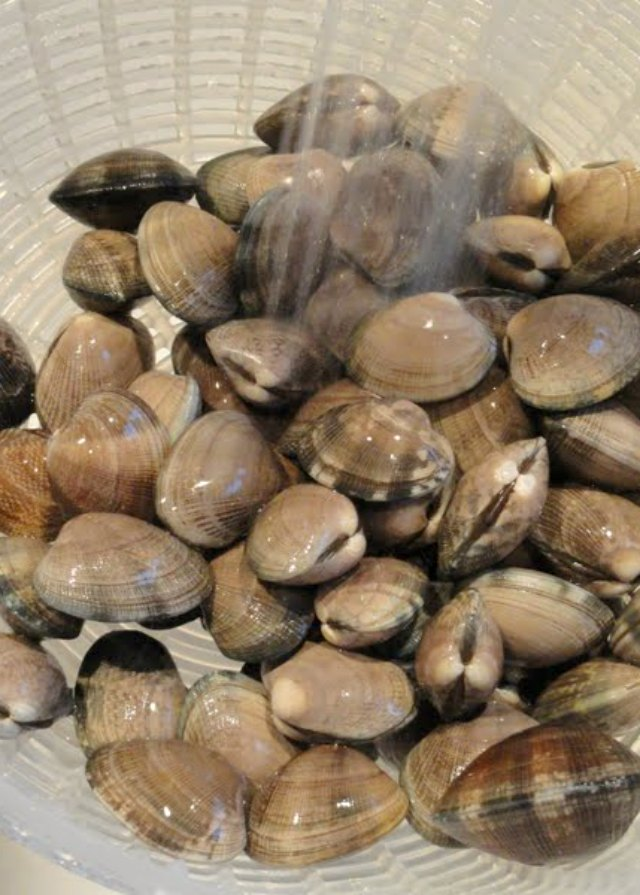 Rinse Clams to make Clams with Linguine in white wine butter sauce recipe from Serena Bakes Simply From Scratch.