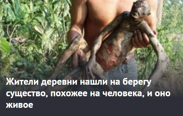 https://life.ru/t/%D0%BC%D1%83%D1%82%D0%B0%D0%BD%D1%82%D1%8B/1134129/zhitieli_dierievni_nashli_na_bierieghu_sushchiestvo_pokhozhieie_na_chielovieka_i_ono_zhivoie