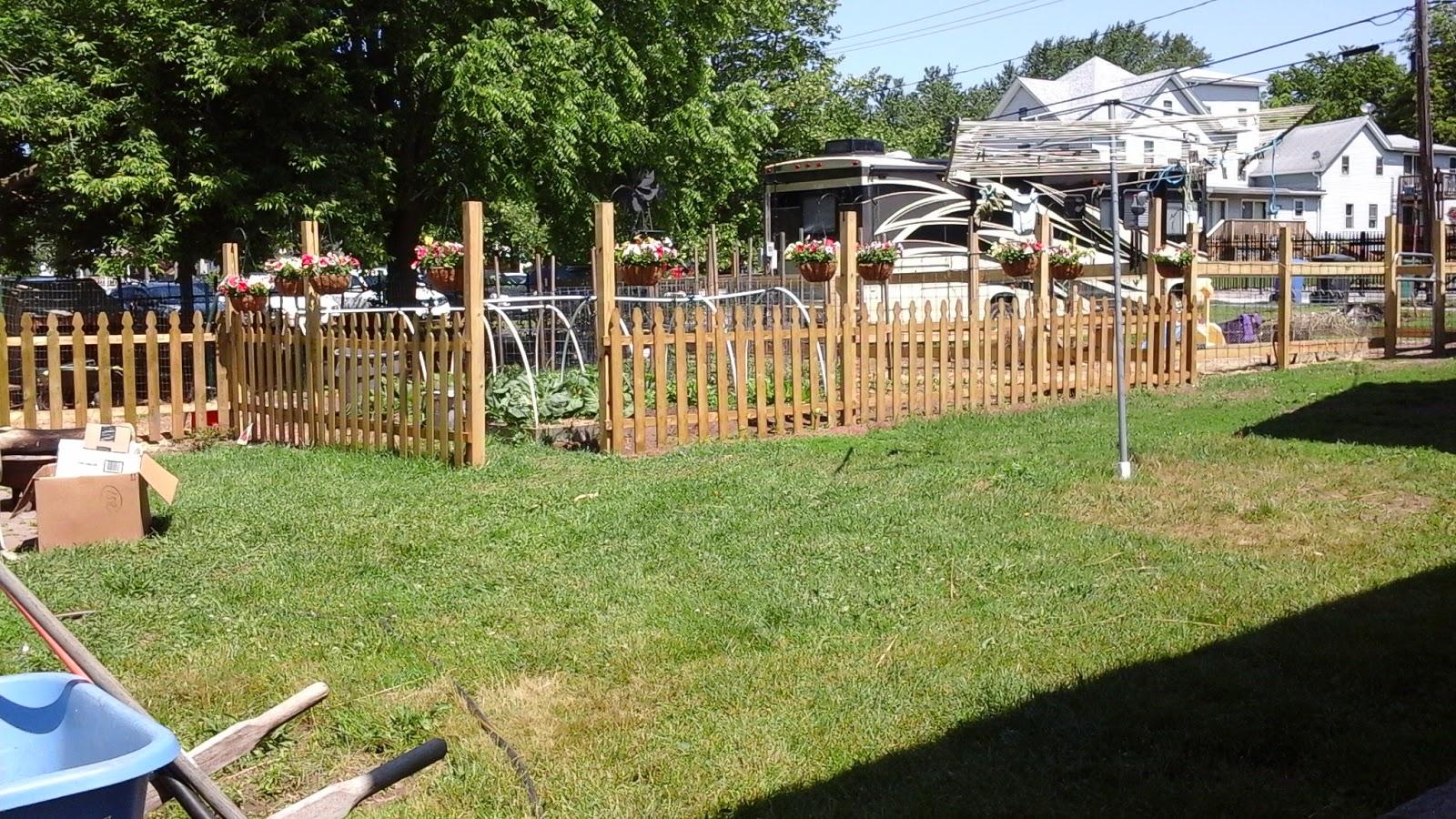 henny penny farm backyard farm photos of the