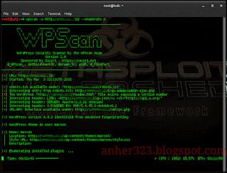 wpscan -u (url target) --enumerate p