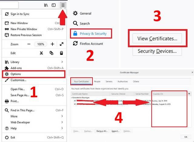 Cara Mengetahui Sertifikat Elektronik e-Faktur Expired di Mozilla Firefox