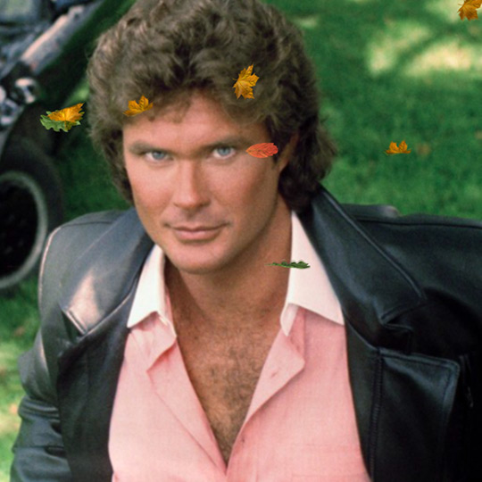 David Hasselhoff Wallpaper Engine