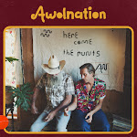 AWOLNATION - Here Come the Runts Cover