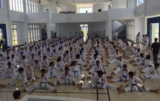 Karate, Taekwondo, pencak silat, bonepos