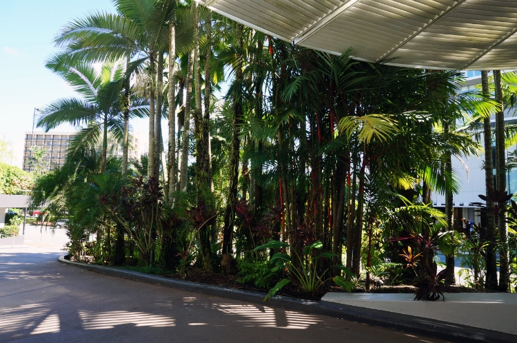 Hilton Cairns, Australia, entrance, Euriental