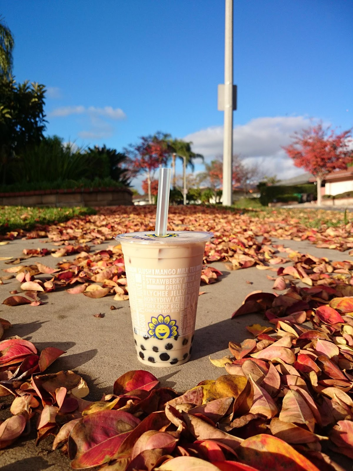 挑食多: [美國美食]Lollicup樂立杯~美國珍珠奶茶連鎖店~bubbletea~加州~給自己一個假期~