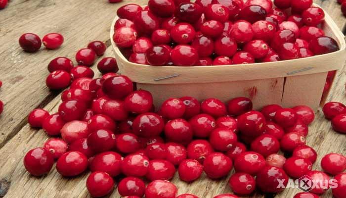 Cara menyembuhkan dan mengobati sariawan dengan jus cranberry