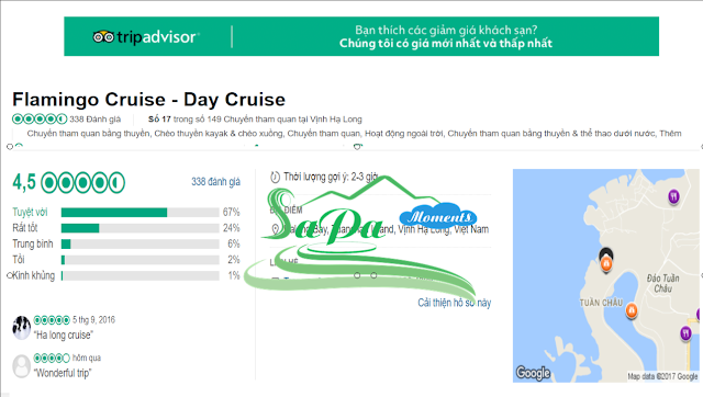 Flamingo cruise tripadvisor review