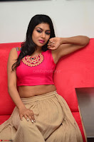 Akshita super cute Pink Choli at south indian thalis and filmy breakfast in Filmy Junction inaguration by Gopichand ~  Exclusive 095.JPG