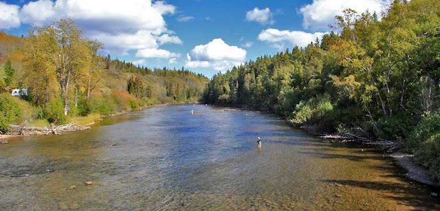Der Stellako River