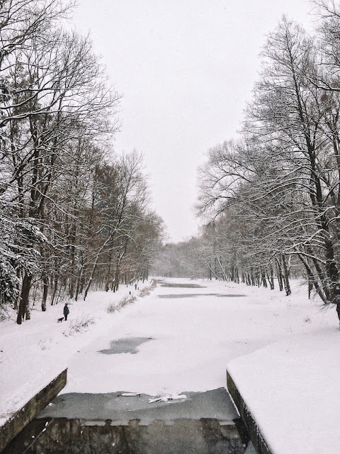 walks in winter