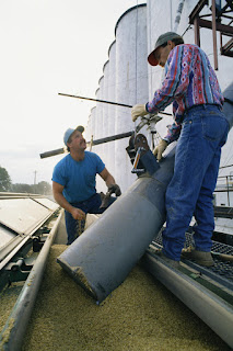 Grain Bin Safety Best Practices