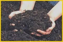 merupakan pupuk kompos yang dibentuk secara fermentasi yang terdiri dari materi Cara Membuat Pupuk Bokashi Praktis