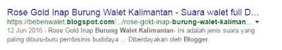 Jangan Beli Suara Rose Gold Burung Walet Kalimantan