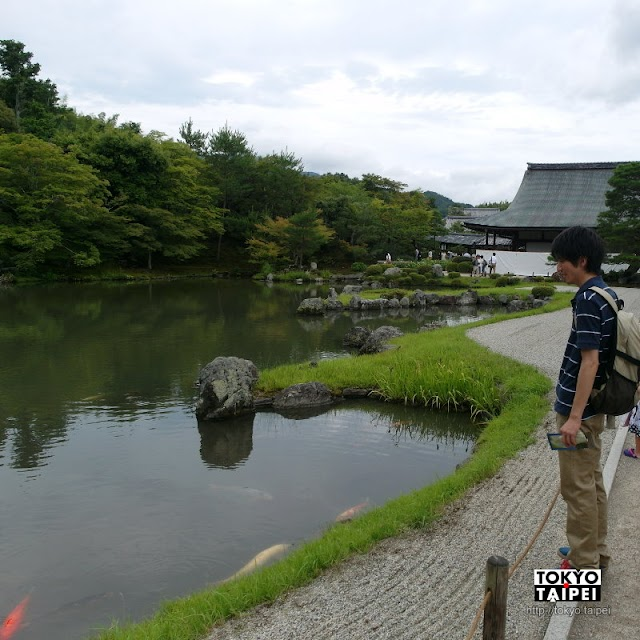 【天龍寺】以嵐山為背景 寧靜優雅的枯山水庭園