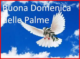 Domenica delle Palme in chiesa a benedire i rami di ulivo
