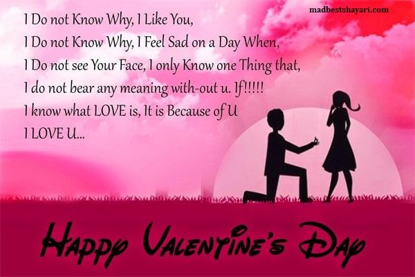 Happy Valentines Day Shayari  Image