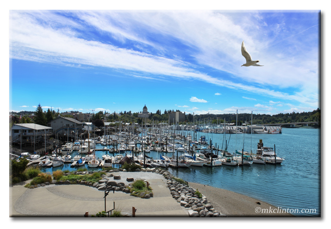 The Port of Olympia