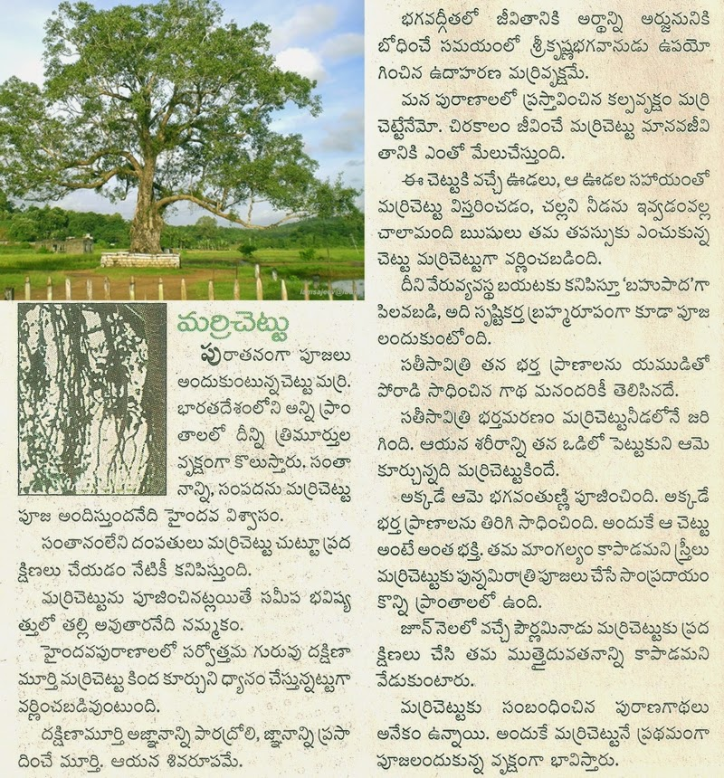 Neem Tree Leaves as Insect Repellant Essay Sample