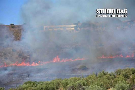 Υψηλός ο κινδυνος εκδήλωσης πυρκαγιάς στην Αργολίδα