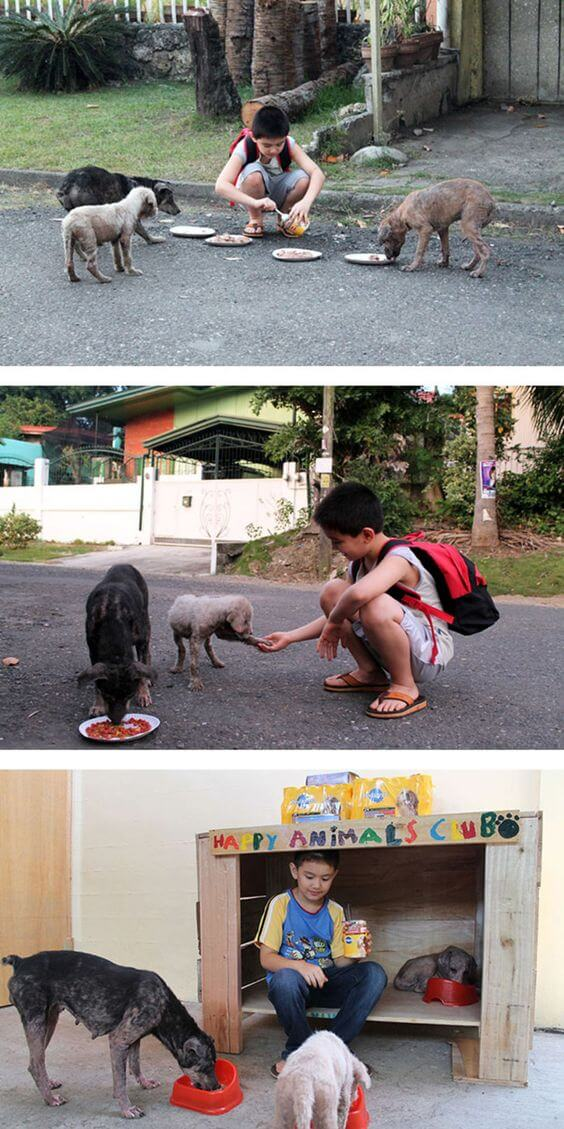 16 Pictures Of Children Restored Our Faith In Humanity - Ken from the Philippines created an animal shelter in his garage to help stray cats and dogs.