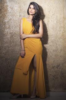 Manisha Shree 3