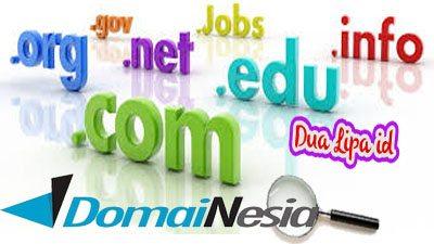 Tentukan pilihan nama domain di DomaiNesia