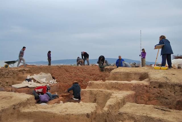 Spanish dig uncovers 16 horses slaughtered in a sanctuary of the 5th century BC