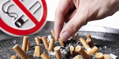 Bahaya Merokok: Efek Rokok Terhadap Organ Tubuh Anda